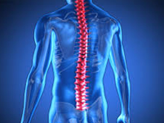 SPINAL-CORD-INJURIES