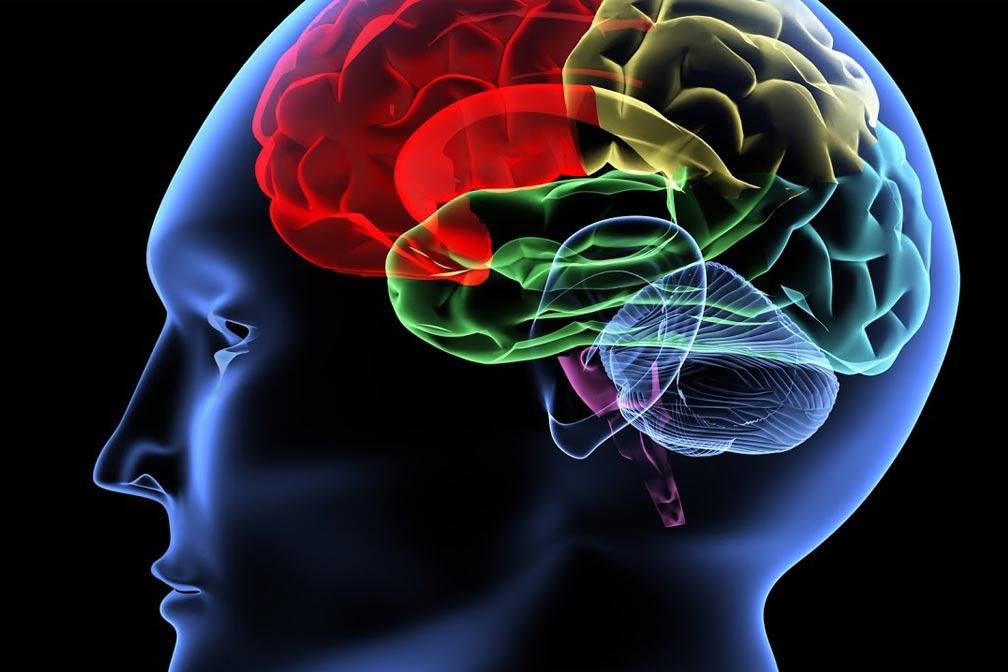 Neurodegenerative_Diseases
